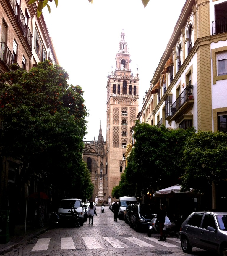 Walk to the Torre Giralda, lined with orange trees. Sevilla, Spain.